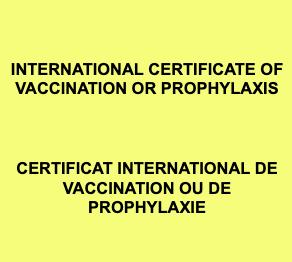 ICVP logo